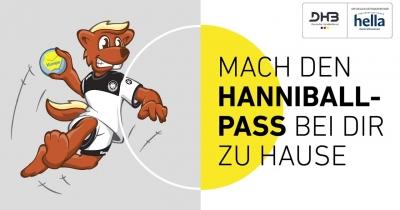 DHB-Hanniballpass